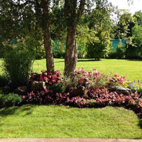 Dalla Pianta e Rossi Vivaio di Fiori e Piante e Giardinaggio
