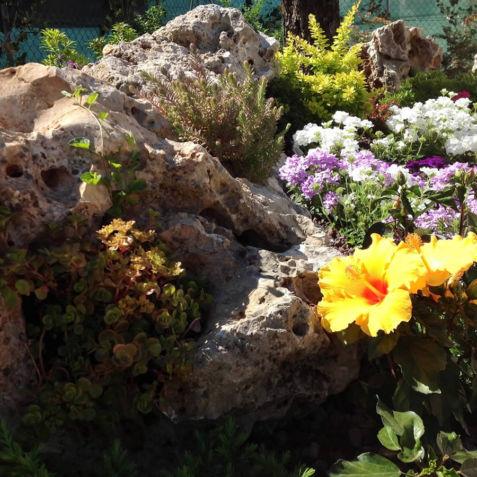 Progettazione e realizzazione giardini dalla pianta e rossi Forlì