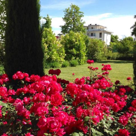 Allestimento Giardini e Parchi Pubblici
